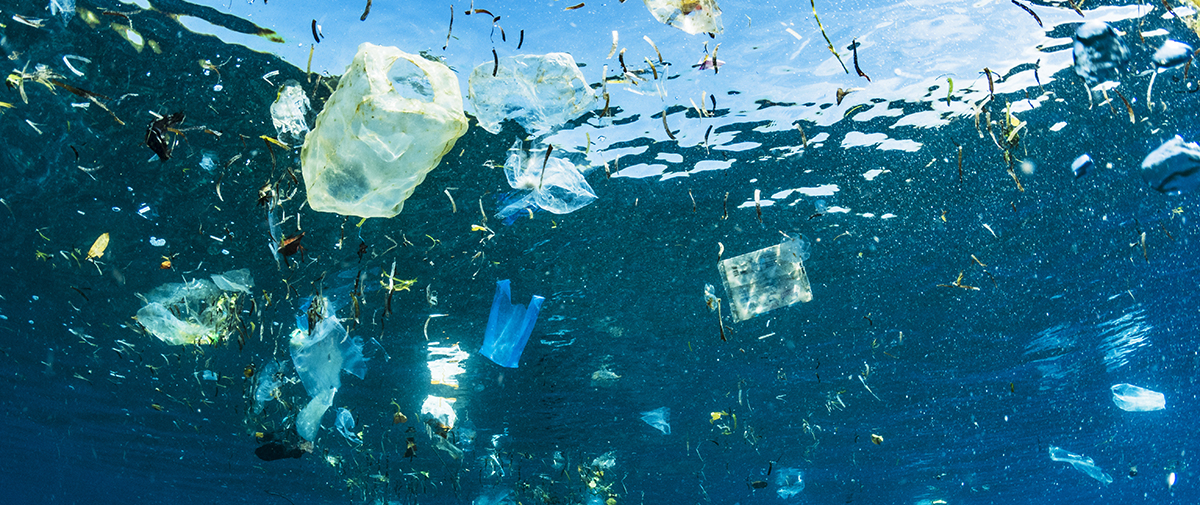 Plastic waste: cost or opportunity?